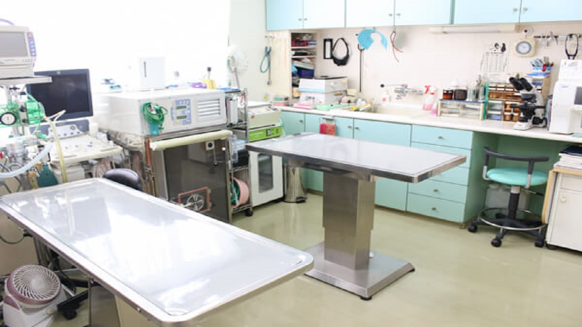 川口動物病院