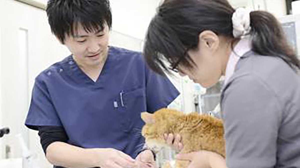 右京動物病院 HEALTH CARE CENTER