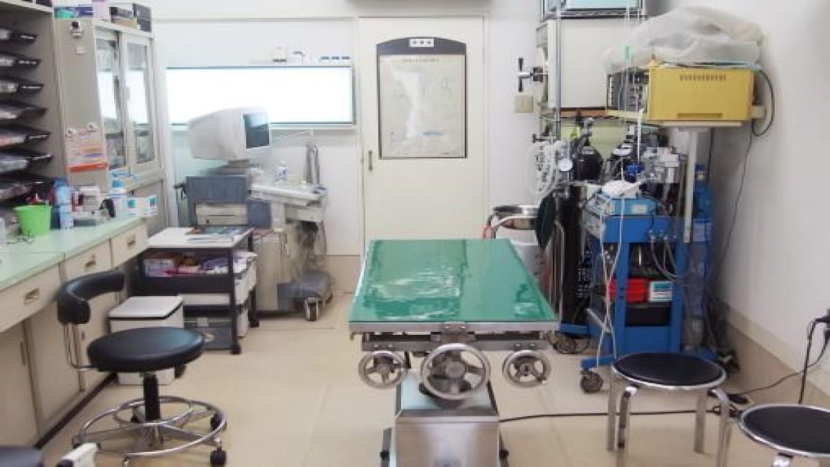 北大阪動物病院