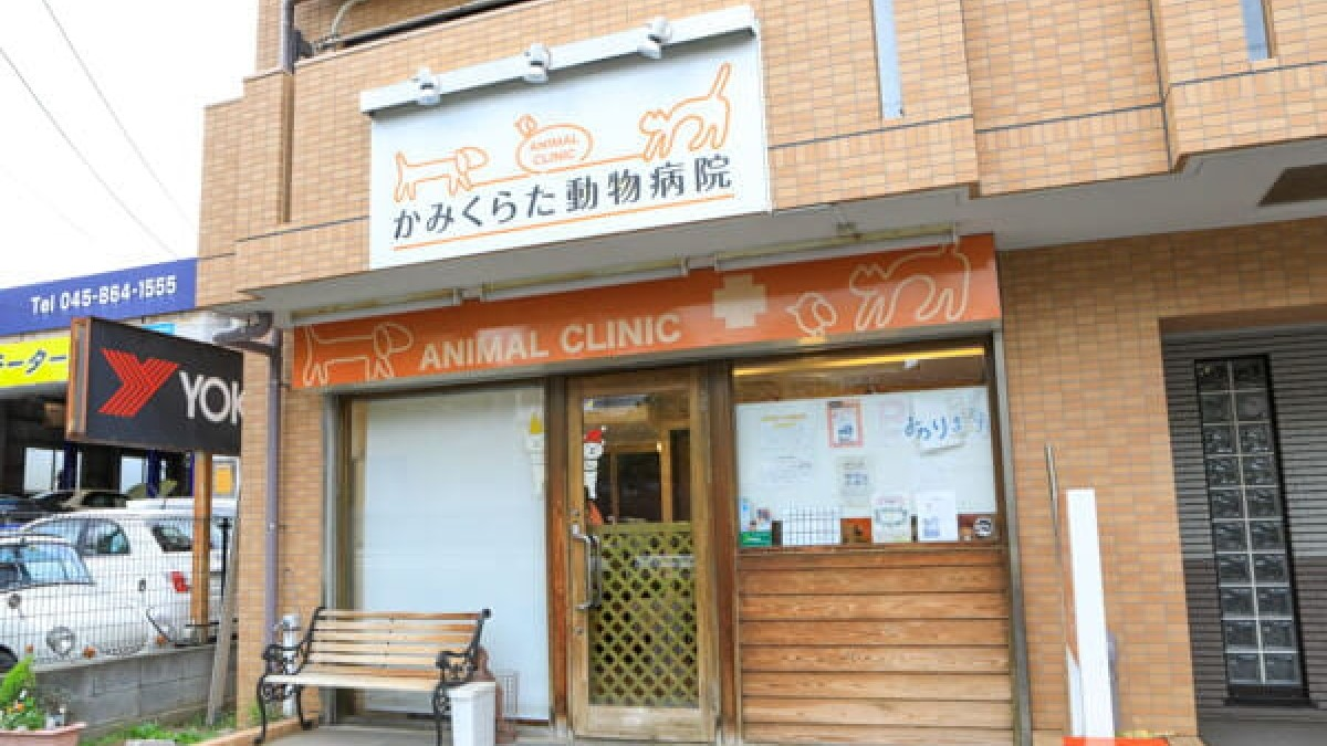 かみくらた動物病院
