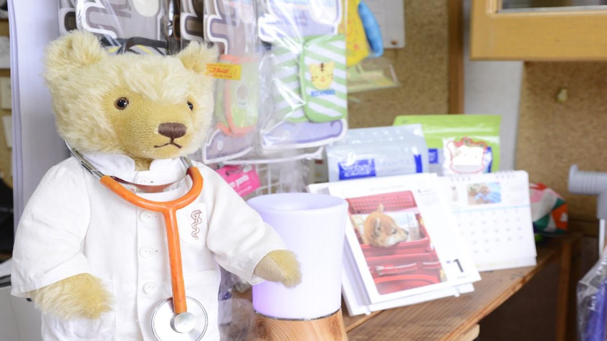テディ動物病院