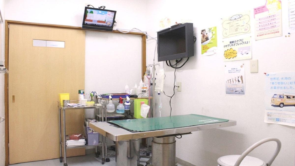 コジマ動物病院