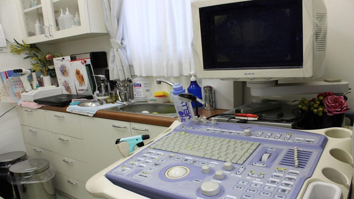 葉山どうぶつ病院