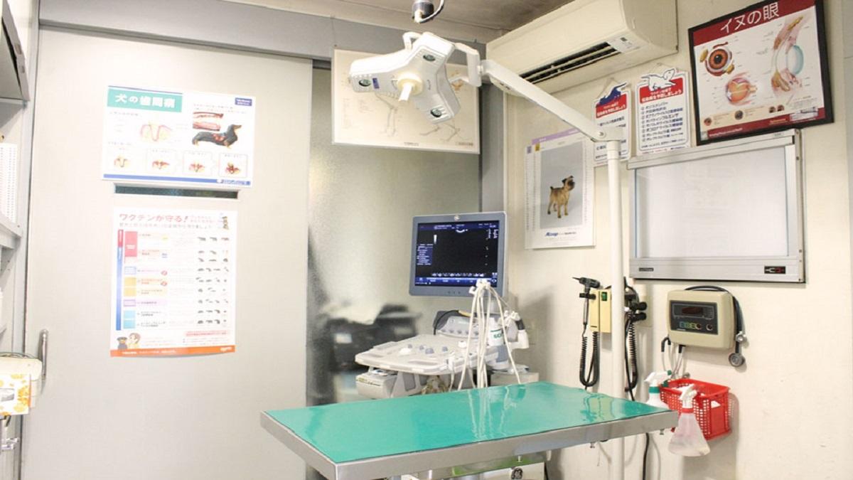 戸田動物病院