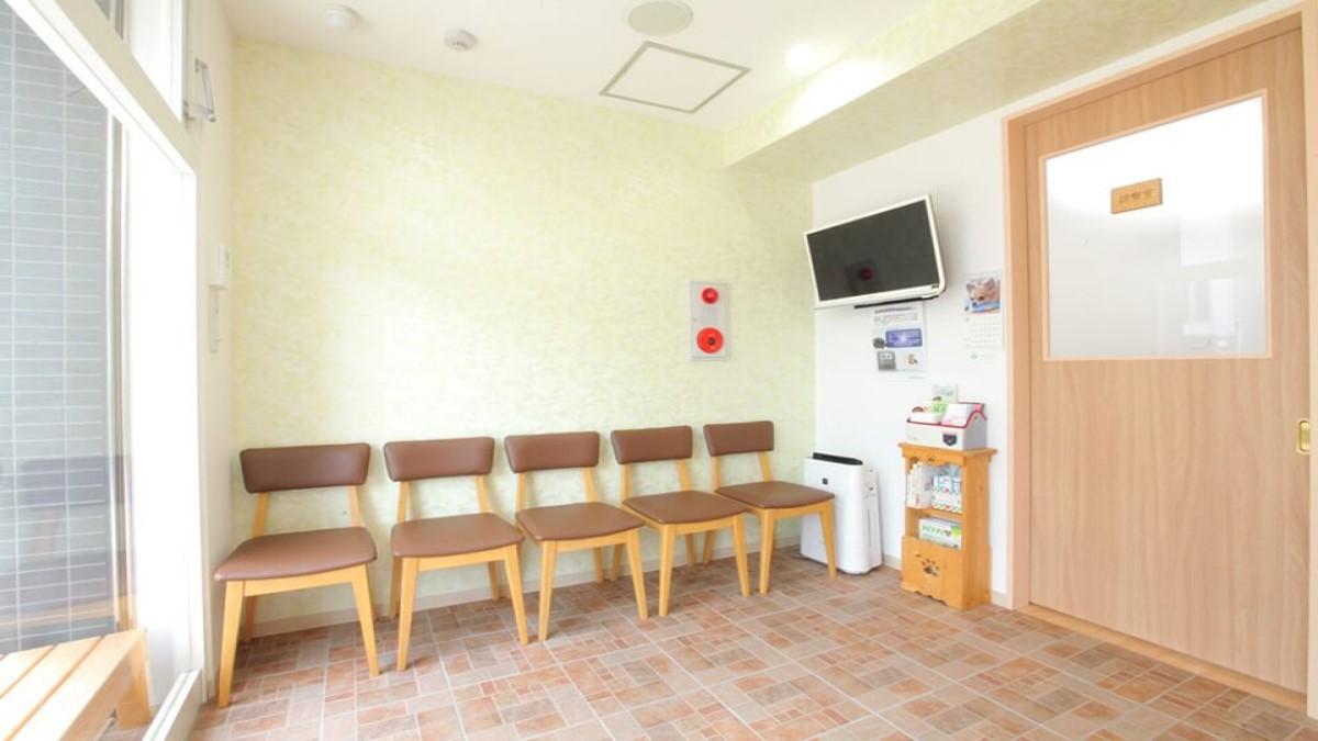 アース動物病院