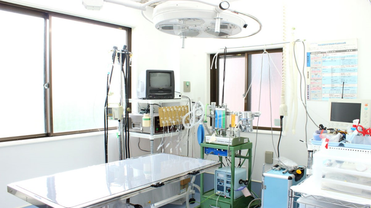ぼくとわたしの動物病院