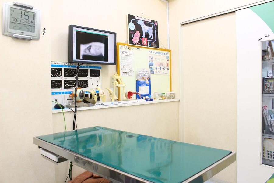 三ッ池動物病院