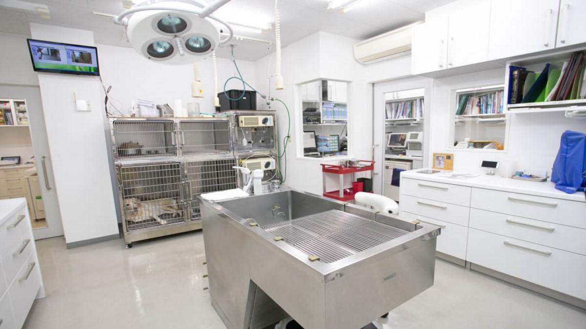 よしいけ動物病院