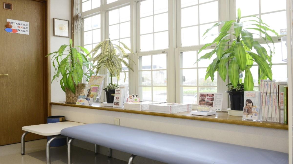 平和動物病院