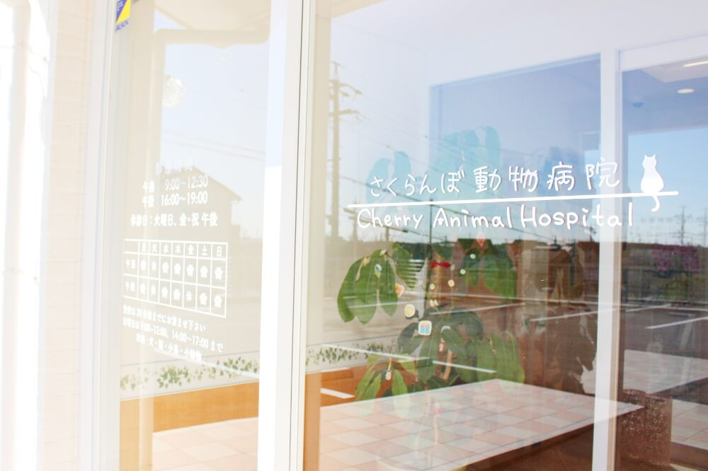 さくらんぼ動物病院