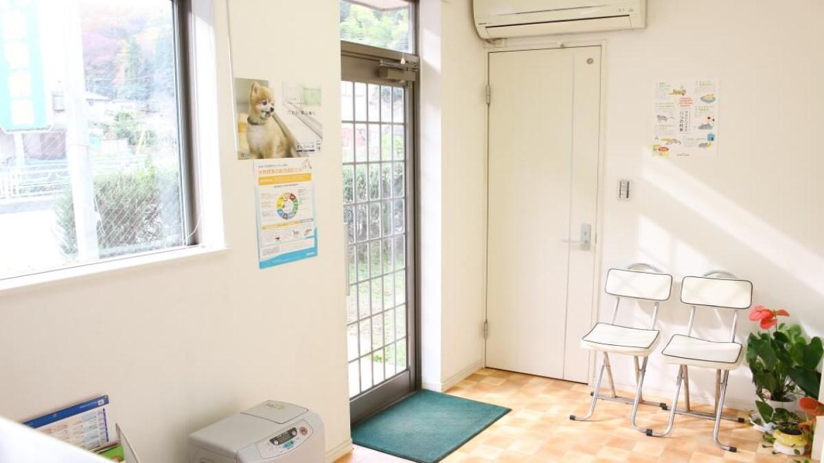 城山動物病院