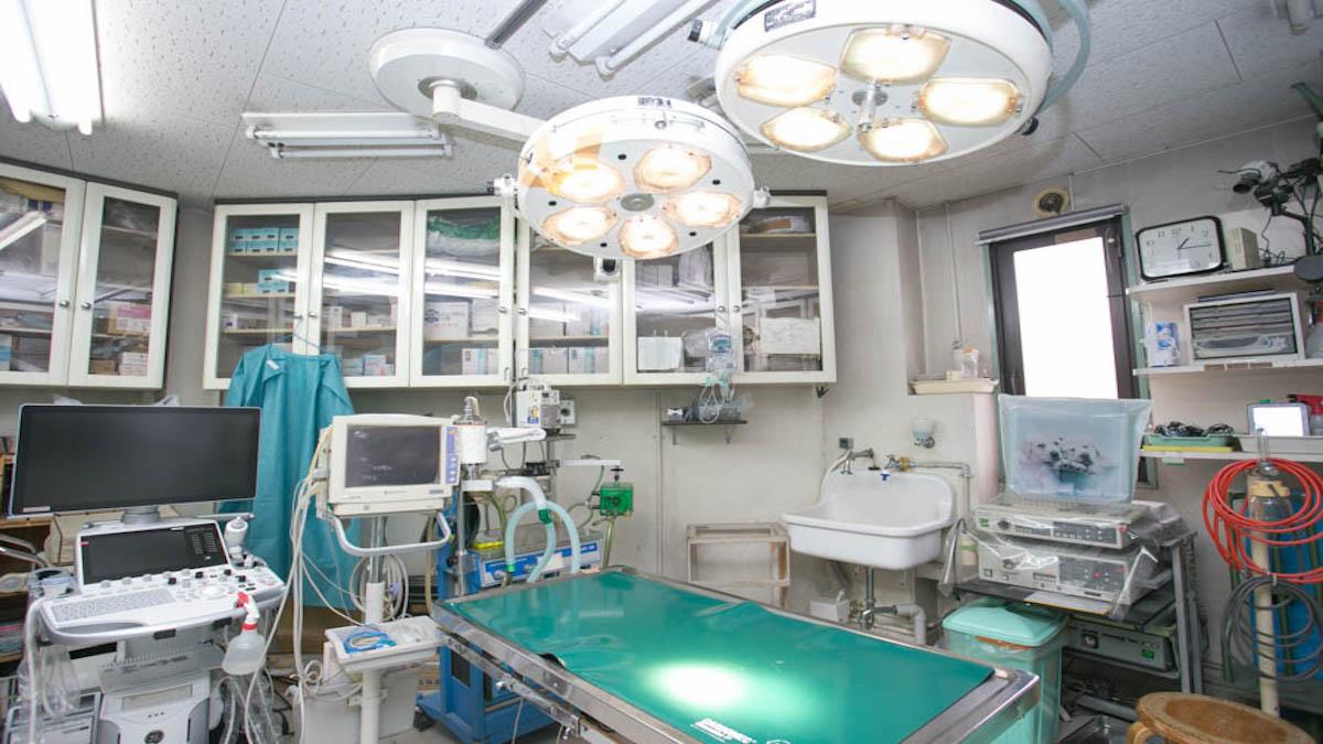 アマノ動物病院