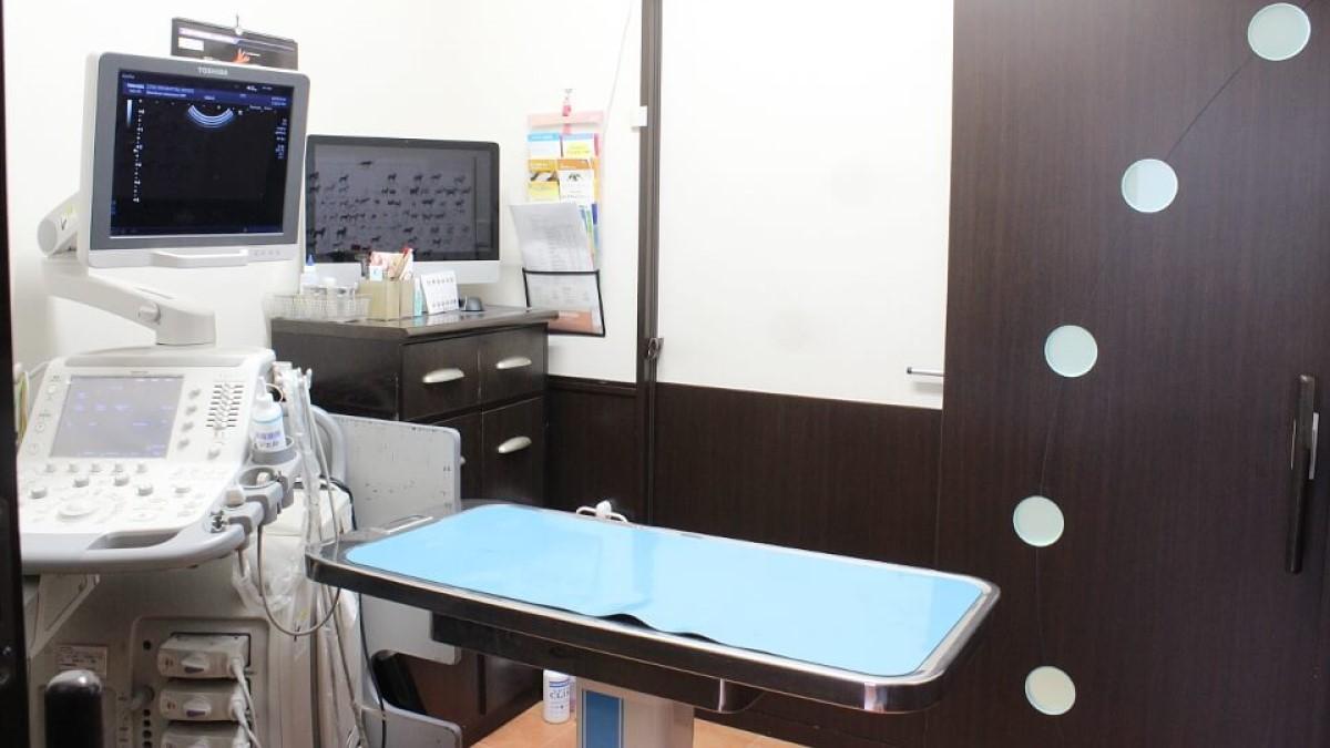 白金高輪動物病院