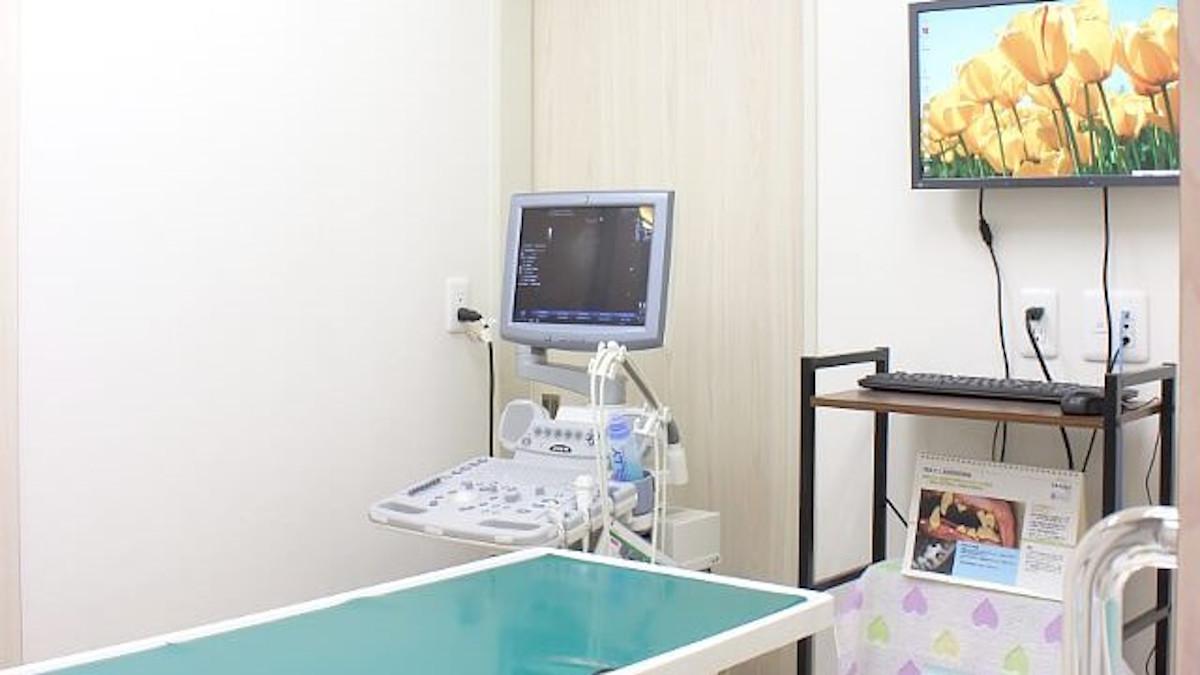 Caroどうぶつ病院診療室写真