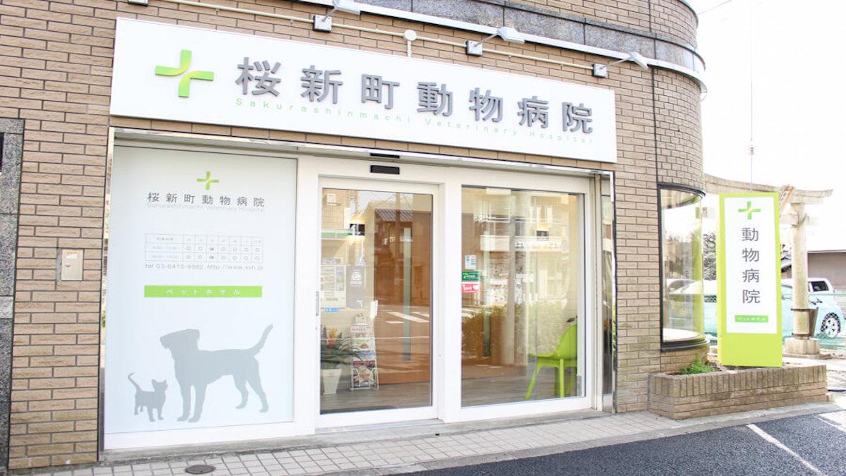 桜新町動物病院