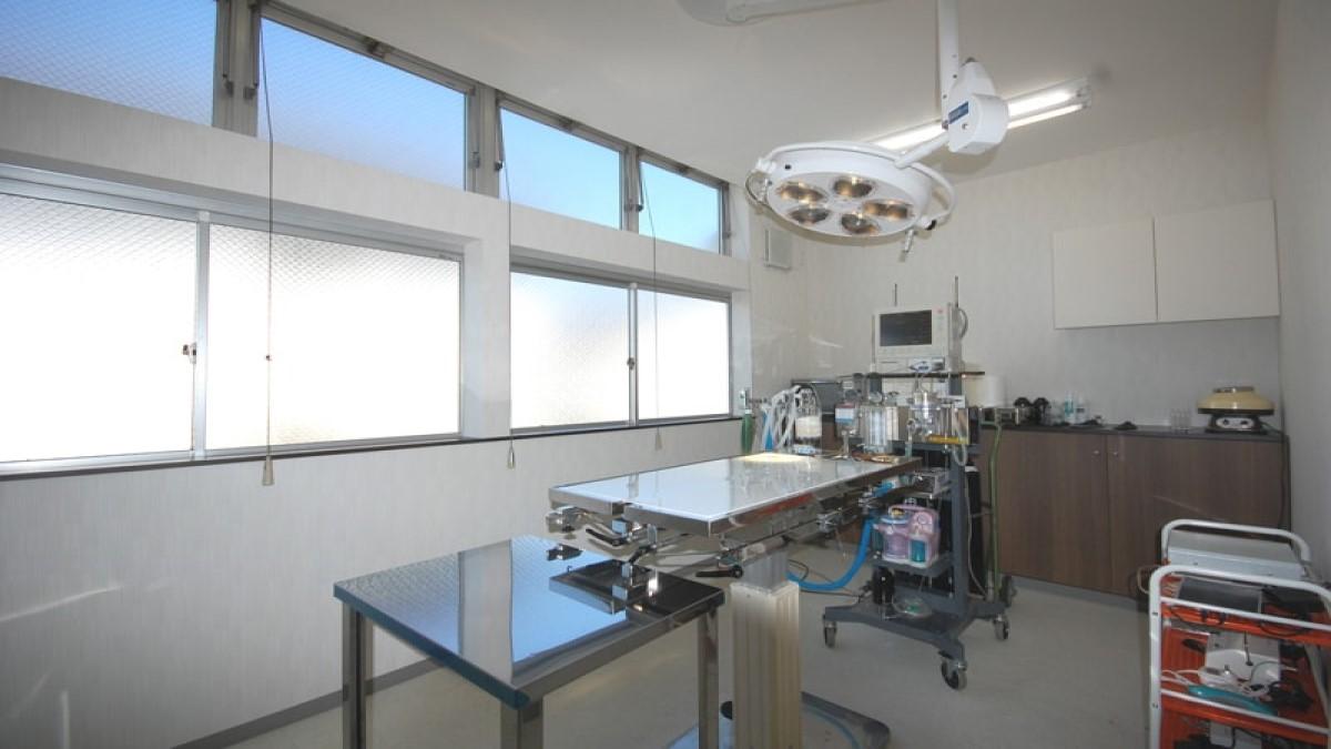 彩の森動物病院