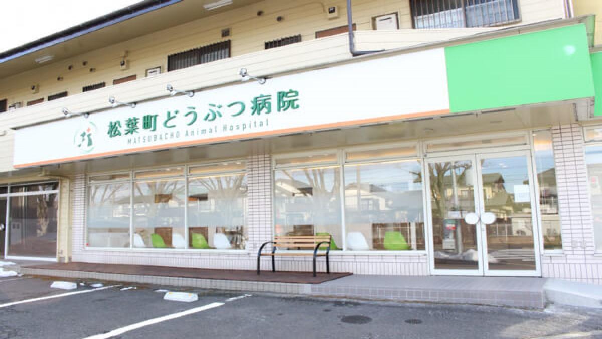 松葉町どうぶつ病院