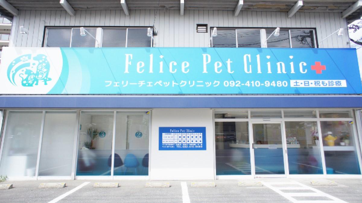Felice Pet Clinic