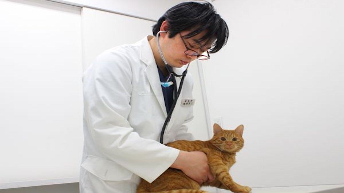 すがわら動物病院