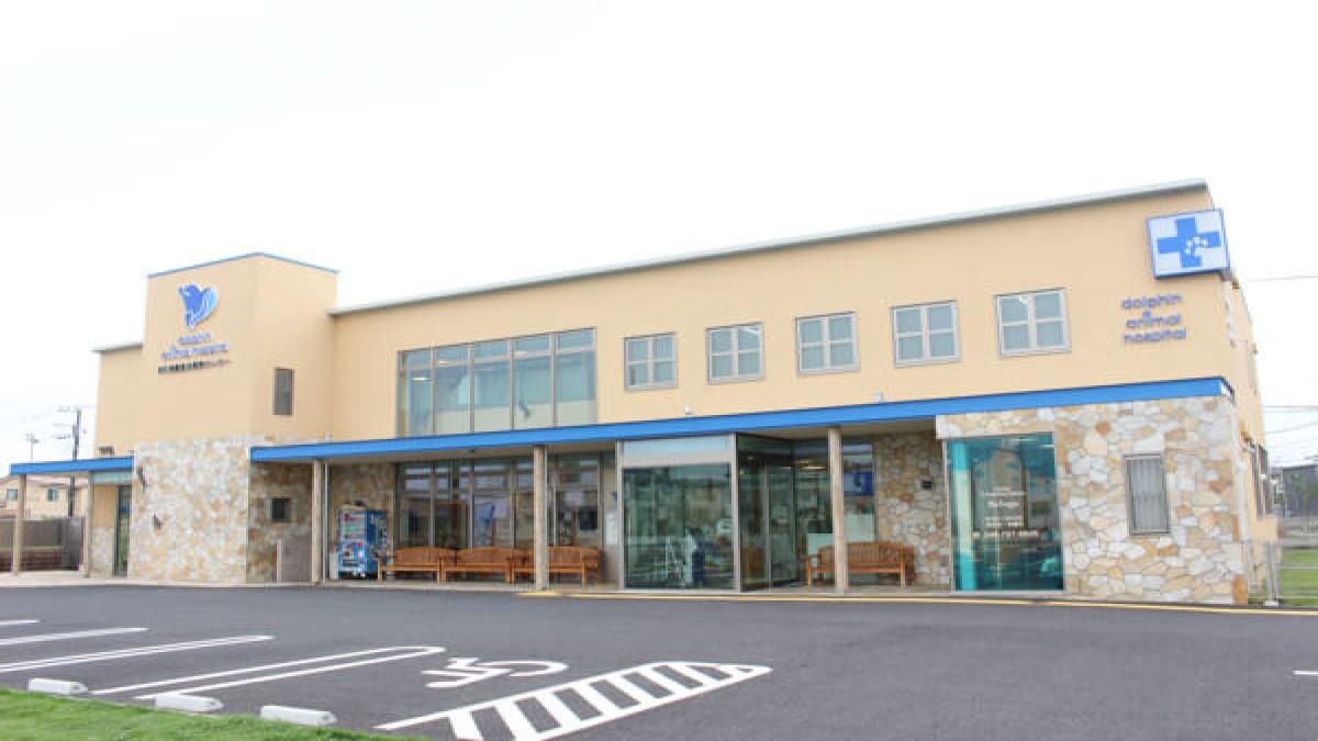 浦和美園動物医療センター ドルフィンアニマルホスピタル