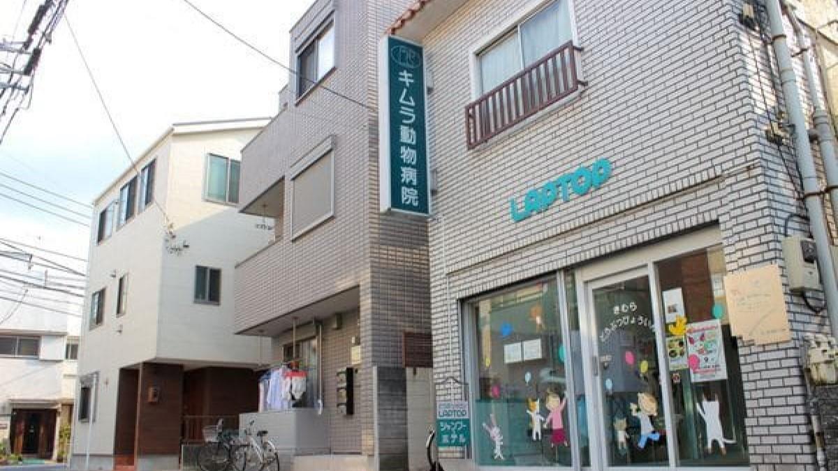 キムラ動物病院