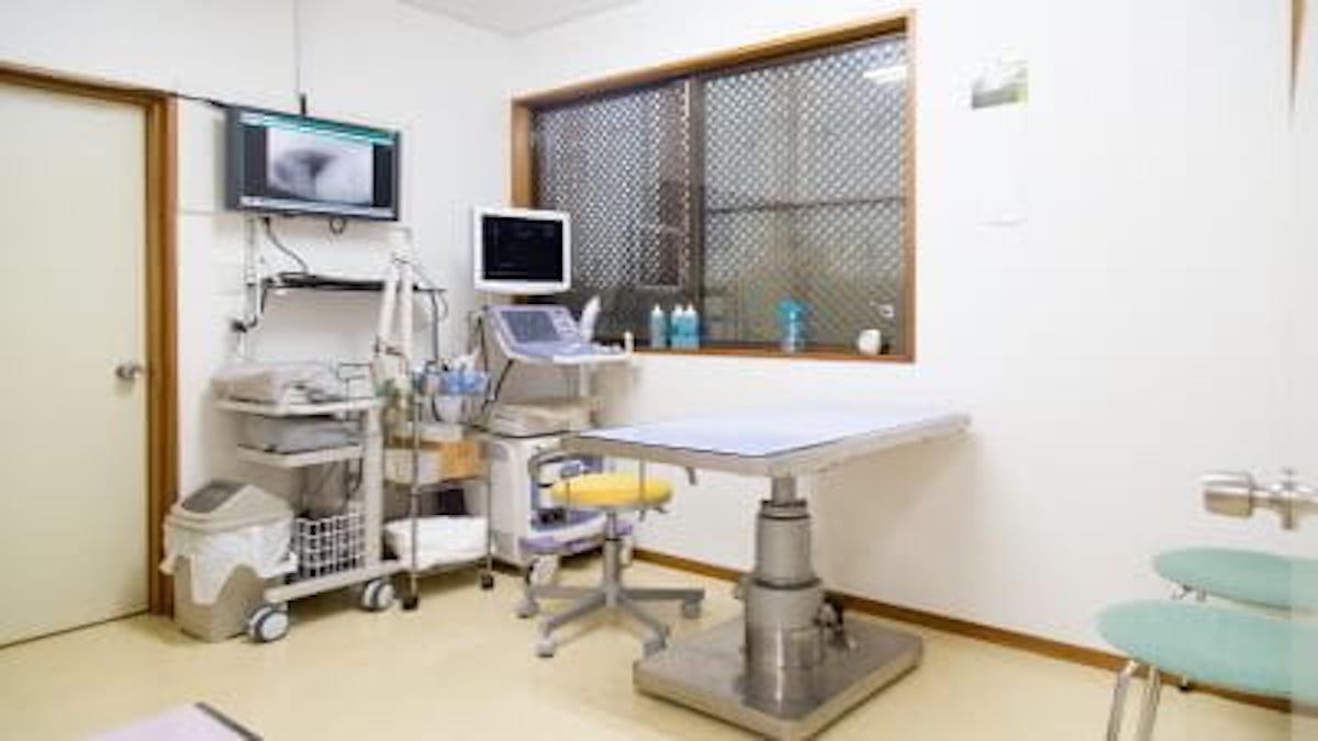 つなぐ動物病院
