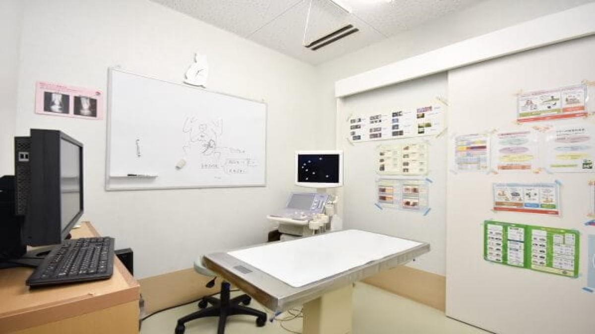アロハ動物病院