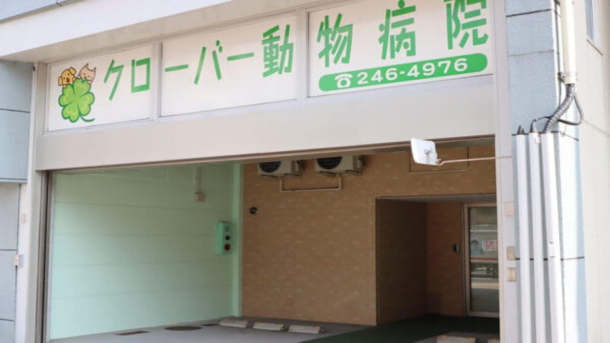 クローバー動物病院