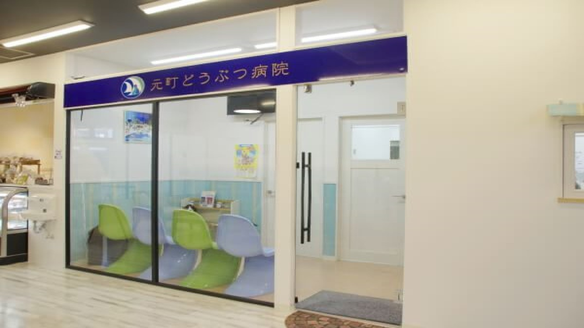元町どうぶつ病院