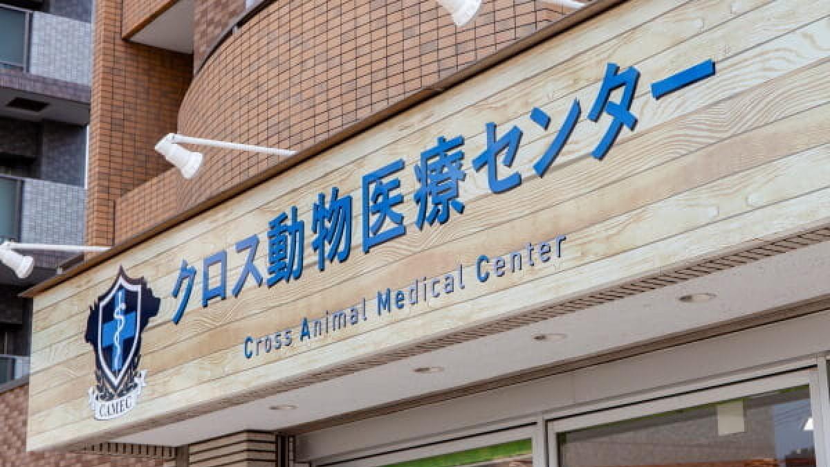 クロス動物医療センター 葛西