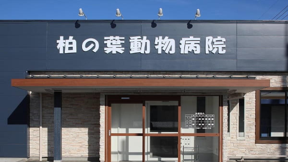 柏の葉動物病院
