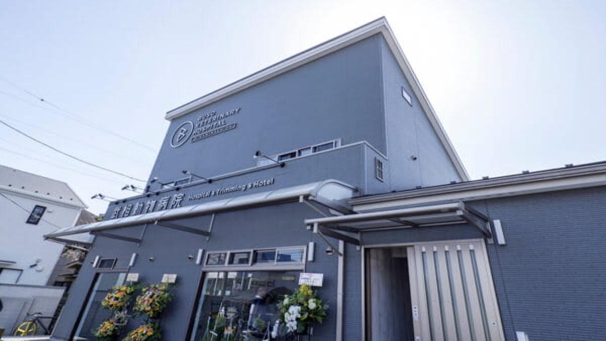 武相動物病院-南町田-