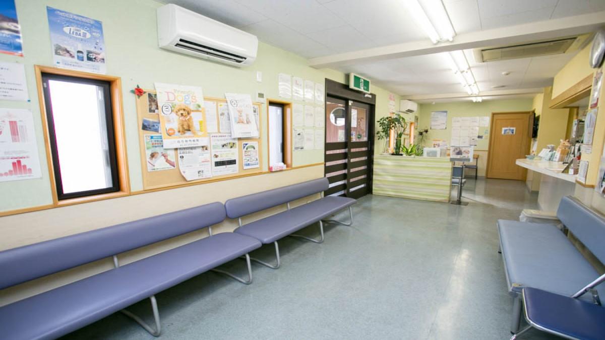 白石動物病院