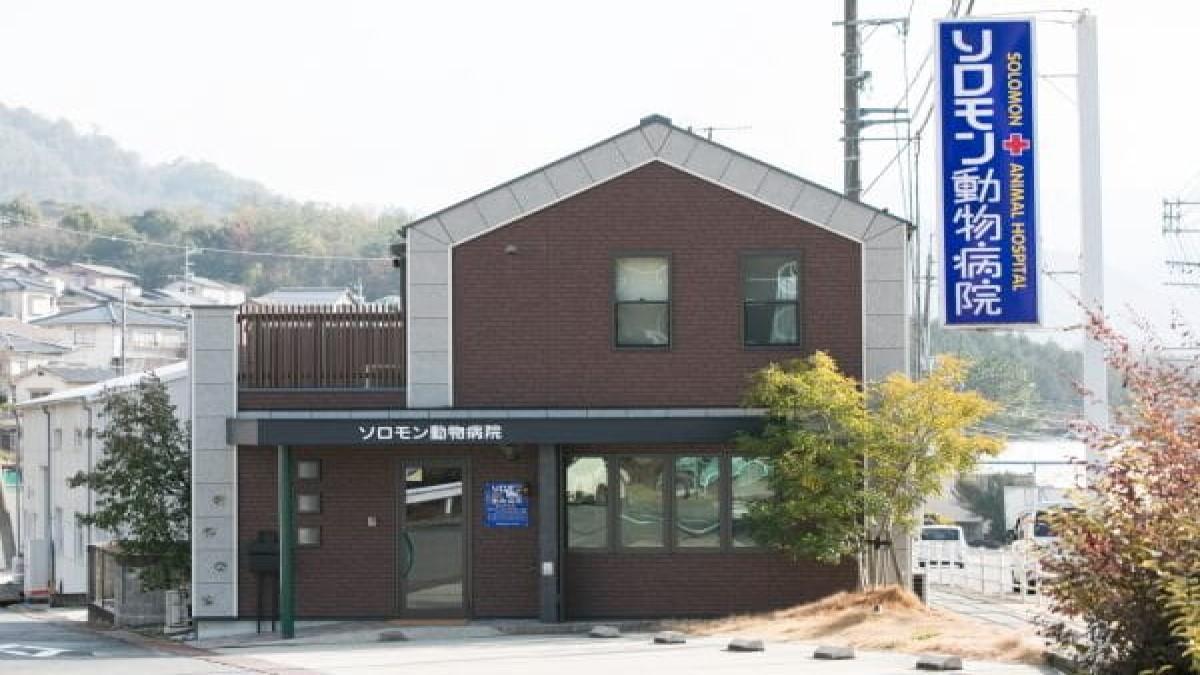 ソロモン動物病院