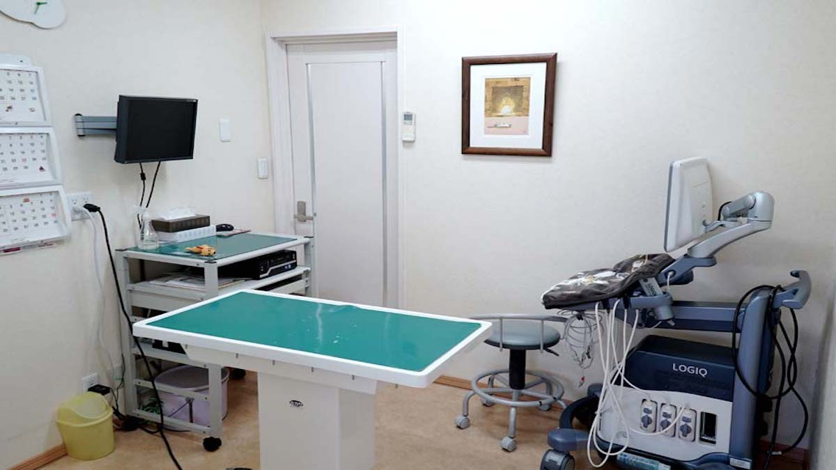 ソマリ犬猫病院