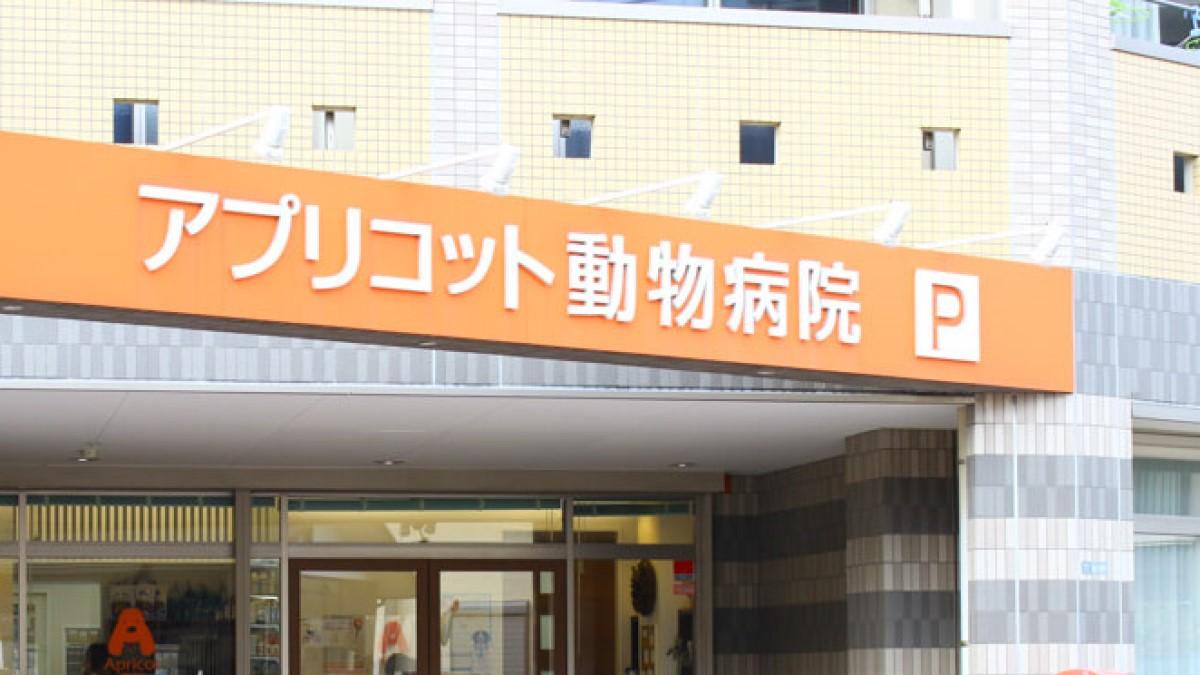 アプリコット動物病院