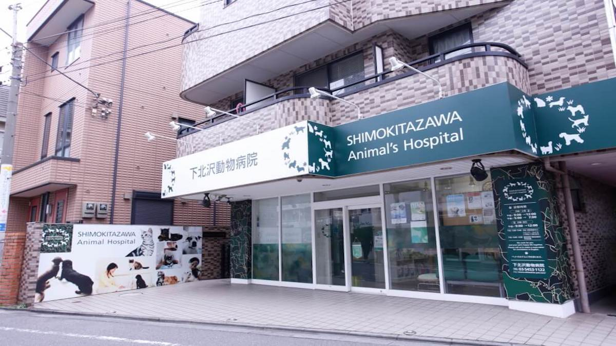 下北沢動物病院