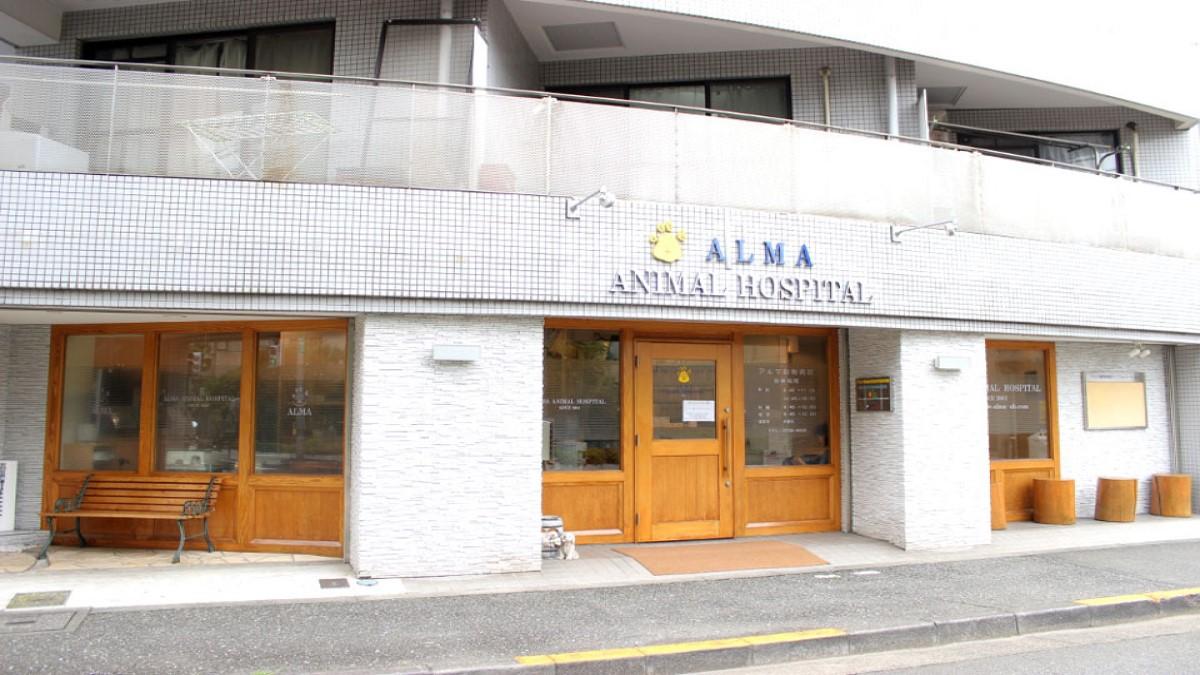 アルマ動物病院