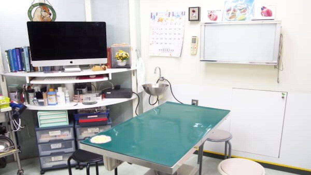 クーパー動物病院