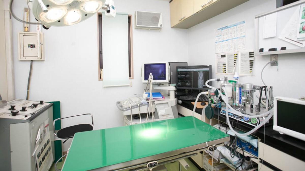 かそり動物病院 スタッフ写真