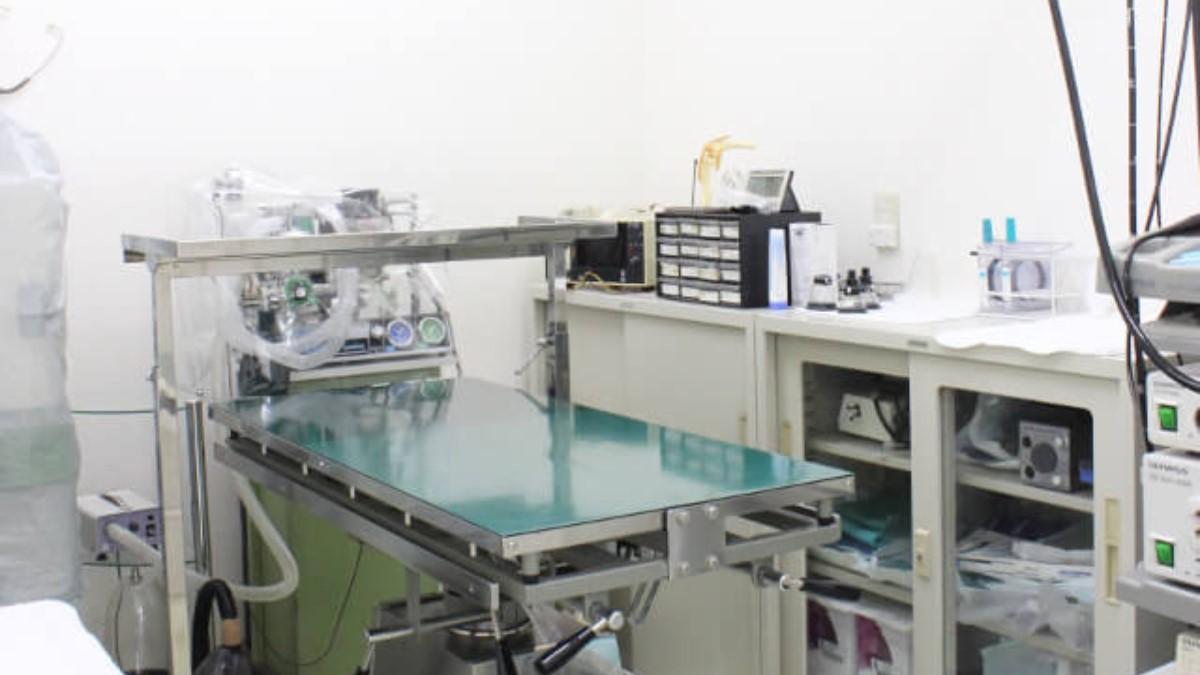 金子動物病院 内観写真