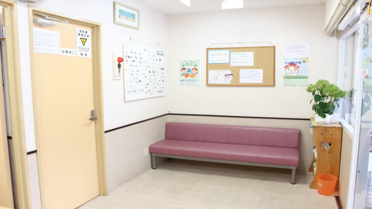 マリー動物病院