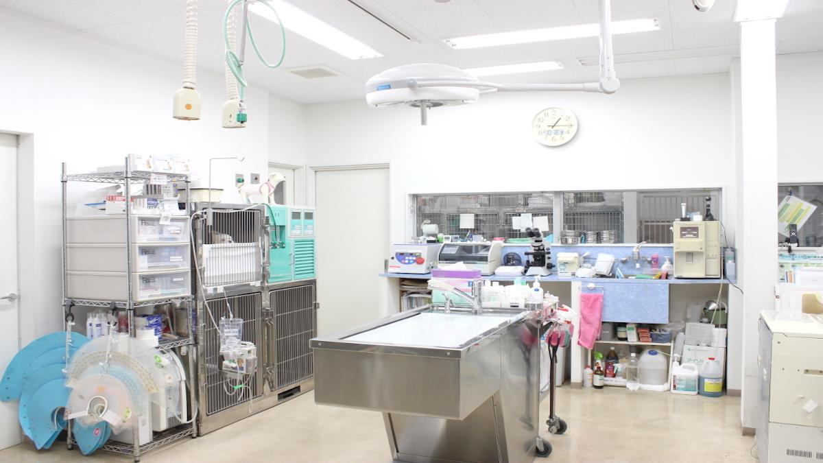 東林間どうぶつ病院