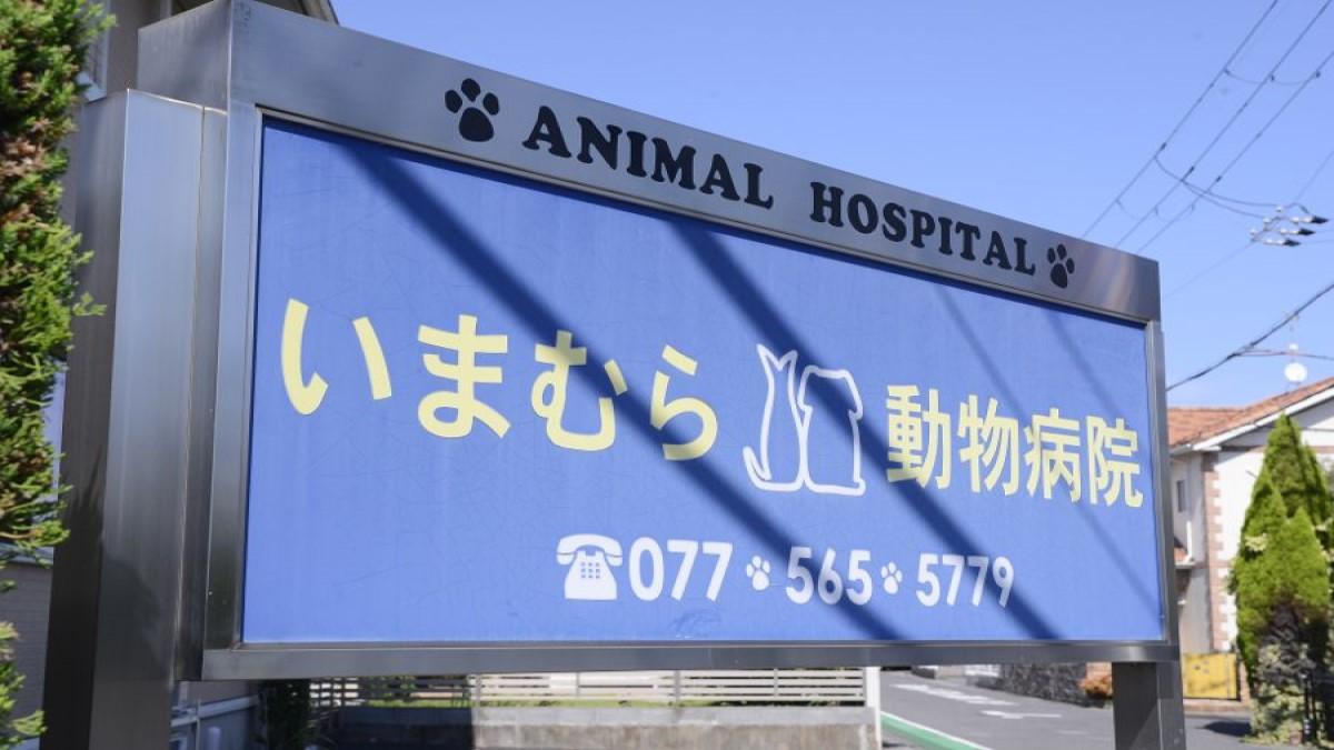 ホリスティックケアいまむら動物病院