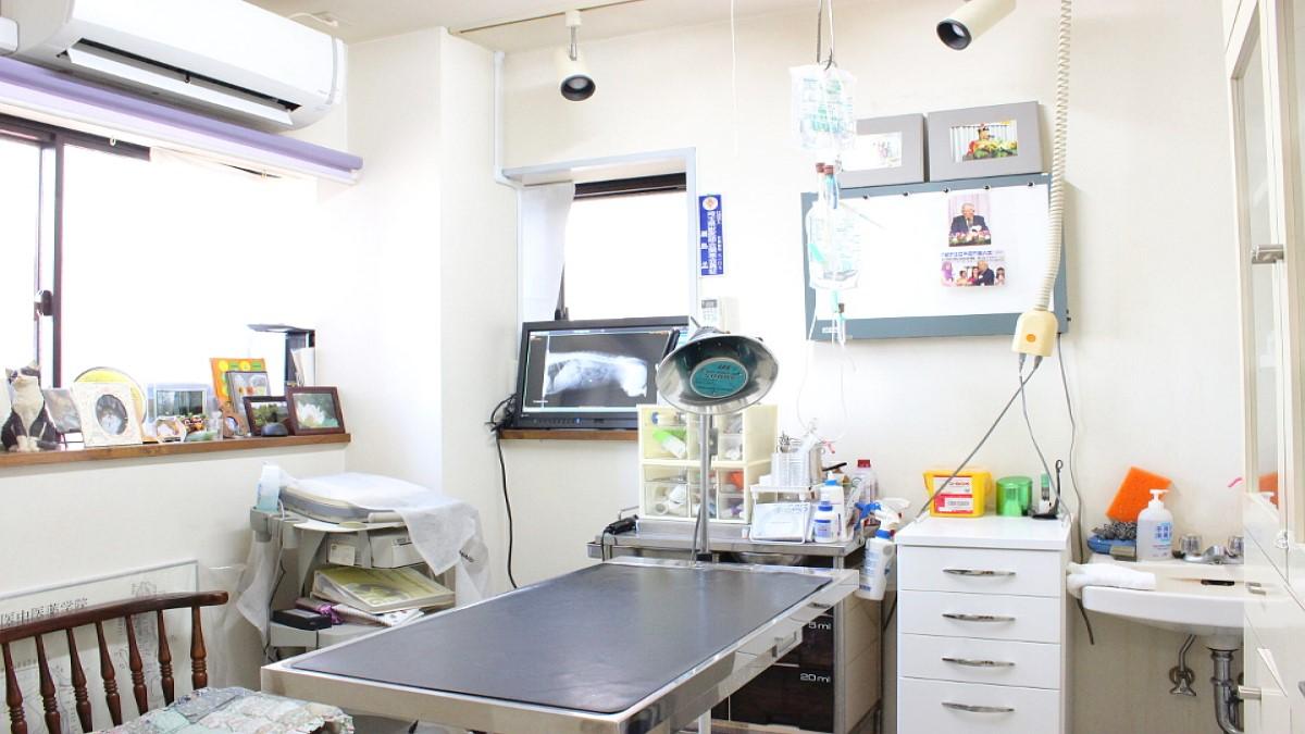 せじま動物病院(京浜東北線北浦和駅から徒歩約23分)