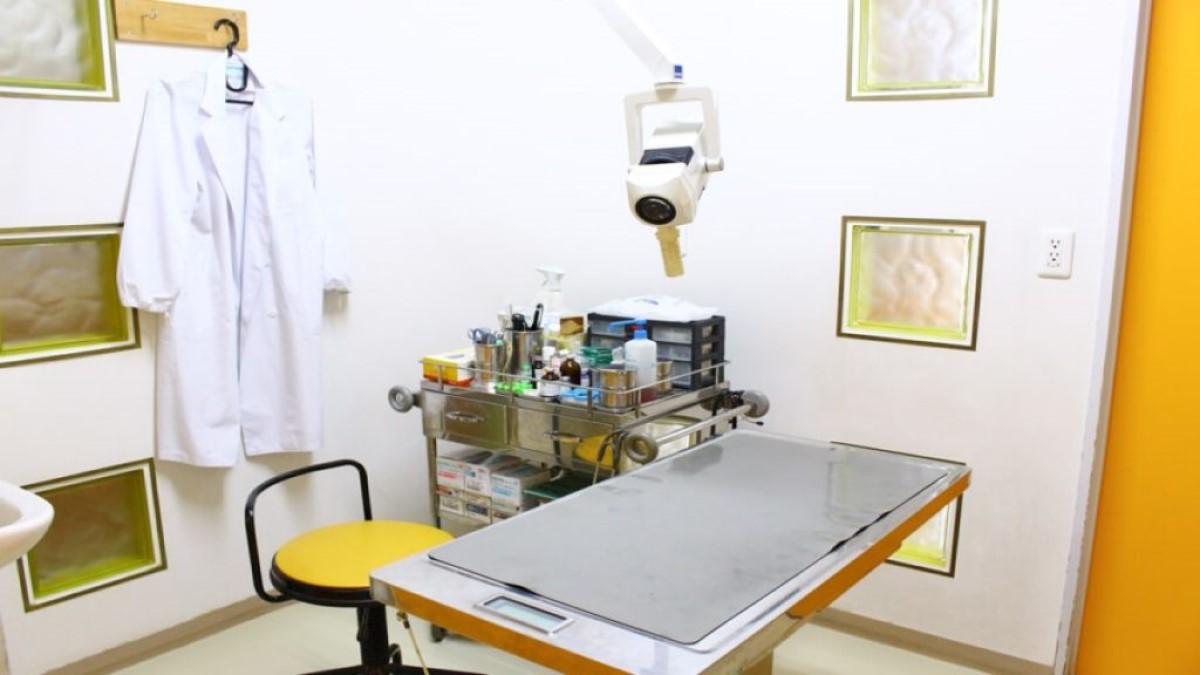 ペットサーブ動物病院診療室写真