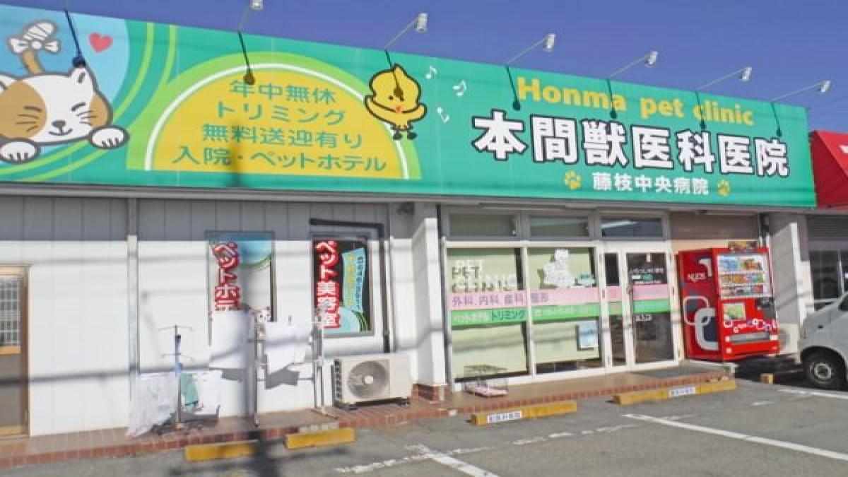 本間獣医科医院 藤枝中央病院