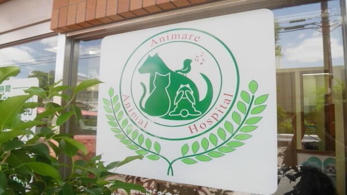アニマーレ動物病院