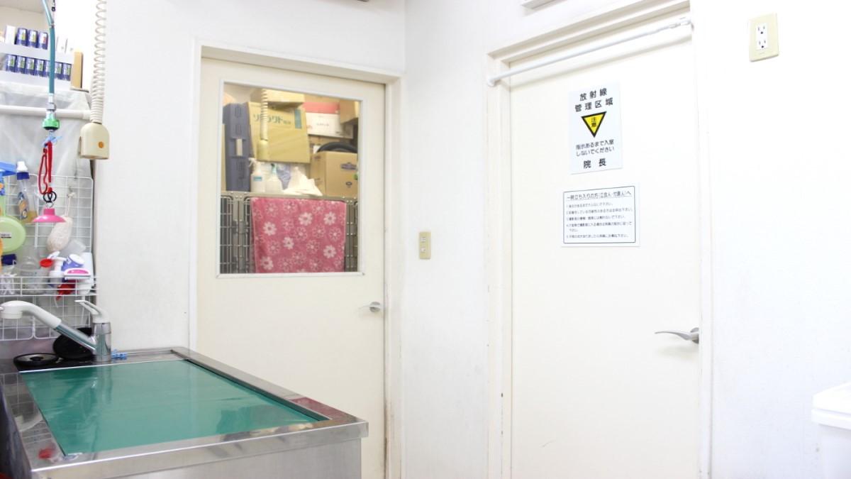 チコラ動物病院