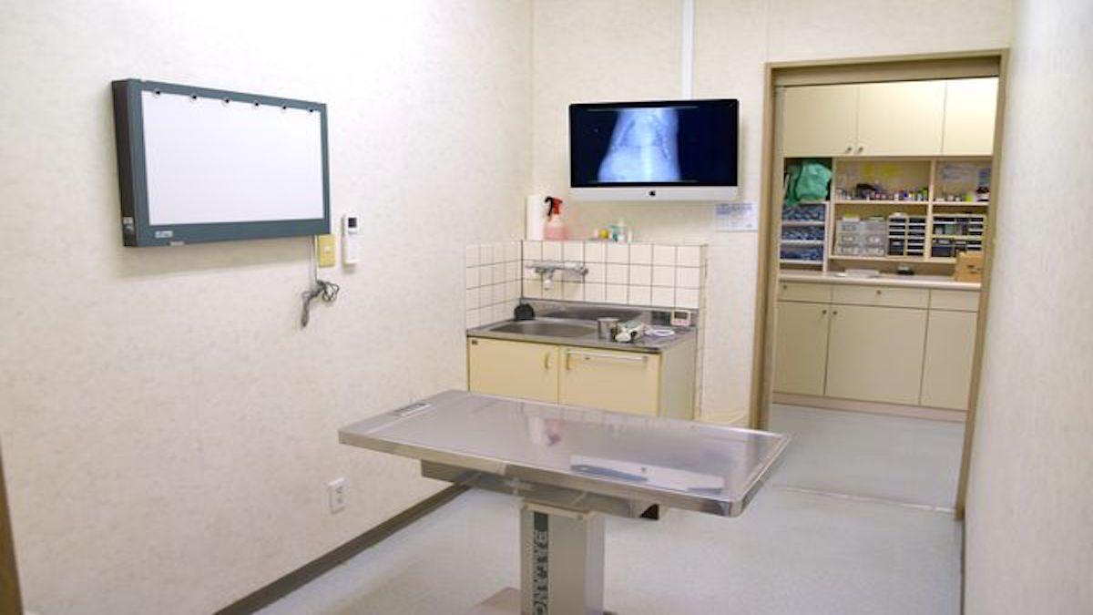 すげの動物病院